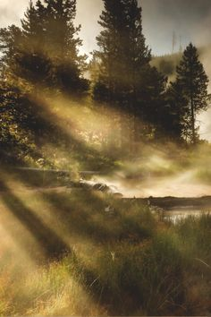 Yellowstone National Park | Rebecca Harkness #travel #wanderlust #america