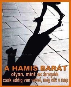 Jokes Quotes, Quotations, Humor, Hungary, Fun, Movie Posters, Husky Jokes, Humour, Film Poster