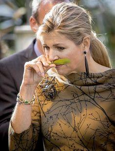 Koningin Máxima heeft dinsdagmiddag een uitgebreid werkbezoek gebracht aan het tuinbouwbedrijf Koppert Cress in Monster. De koningin nam in de proeftuin ruim de tijd om te proeven en ruiken van de talrijke eetbare planten en bloemen.