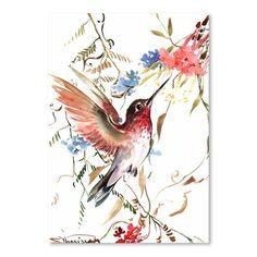 Americanflat Hummingbird by Suren Nersisyan Art Print