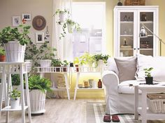 Un #salón #decorado con #plantas