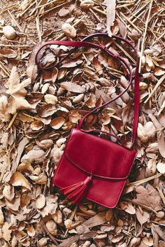 RED-Y for the Holidays? Take our Mini Crossbody, Riley on the road with you to Grandmother's house.