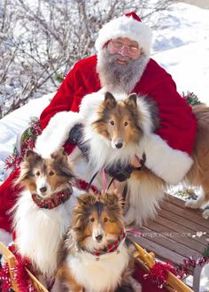 Jolly Old St. Nick and his best helpers