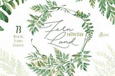 Fern Land. Watercolor Collection by OctopusArtis on @creativemarket