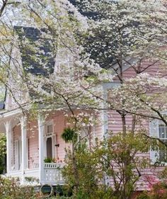 Dogwoods and Southern Porch Charm