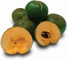 Lucuma is synonymous with one of the most precious fruit of Peruvian cuisine and growing presence in the various cuisines.