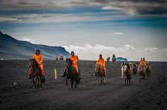 Icelandic horses at Porsmork, Iceland