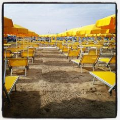#ricordi d'#estate : #ombrelloni #giallo #yellow #spiaggia #mare #sea #beach #pineta #pinarella #cervia #streetphotography #riviera #romagna #igersfc #ig_ravenna #ig_forli_cesena #ig_emilia_romagna #ig_emiliaromagna #vivoitalia #vivoemiliaromagna #vivocesena #vivorimini #volgoitalia #volgoemiliaromagna