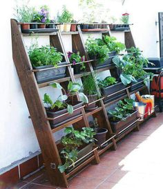 Space saver. Grow your own food
