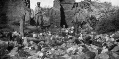 The Gallipoli centenary is a shameful attempt to hide Armenian Holocaust, says Robert Fisk Batalha Do Somme, Crime, Empire Ottoman, Islam, Turkish Soldiers, Historia Universal, Centenario, Persecution, Rest Of The World
