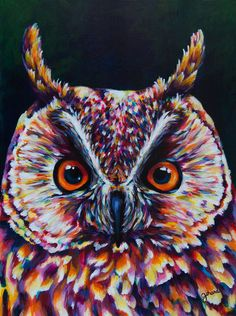 Long-eared Owl Acrylic Painting by claudelle on Etsy