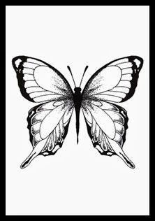 art print fjäril, grafisk tavla, bufferfly, papillon