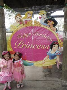 oriental trading decorations  c cakes: Disney Princess Birthday Party