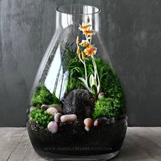 Spent some time playing around with new designs. ☺️ #terrarium #orchid #miniaturegarden #moss #gardening