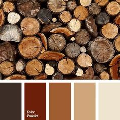 Another beautiful pantone palette. Nice and warm, but still good dark bits and would pair well with vivid color accents for overarching color theme Color Palette No. Nature Color Palette, Colour Pallette, Brown Colour Palette, Bedroom Colour Palette, Brown Colors, Gold Colour, Living Room Paint, Living Room Colors, Living Rooms