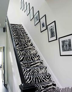zebra stairs?   yes please!!!
