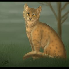 Leopardstar