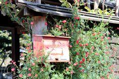 Oravanpesä: Japani 2013, Kawagoe.