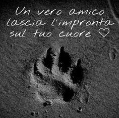 https://immagini-amore-1.tumblr.com/post/155168774550 frasi d'amore da condividere cartoline d'amore