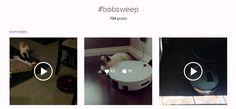 Photos and videos with the hashtag 'bobsweep' on Instagram. https://www.instagram.com/explore/tags/bobsweep/