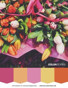 Color Stories: Fresh Bunch