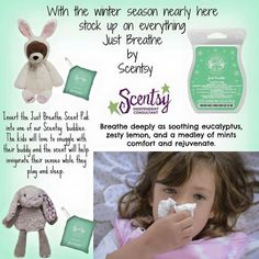 Just Breathe is fantastic in your warmer during those cold months. www.lynkelley.scentsy.us
