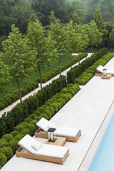 Like the look of hedges and then high trees (with grass between hedges and pool though)