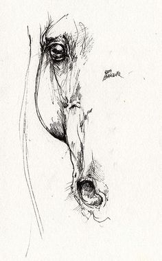 Arabian Horse Sketch 2014 05 24 D Print by Angel Tarantella Placement on Forearm??