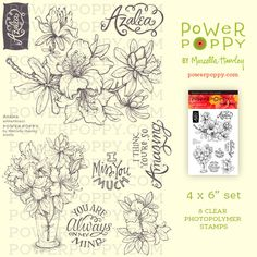 Azalea Stamp Set from Power Poppy by Marcella Hawley Just placed my first order with Power Poppy and Marcella Hawley.