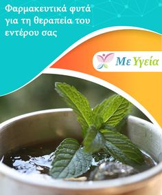Φαρμακευτικά φυτά για τη θεραπεία του εντέρου σας   Η δυσφορία, η φλεγμονή, η #δυσκοιλιότητα, το ευερέθιστο έντερο... Τα έντερά σας αποτελούν ουσιαστικό μέρος του πεπτικού σας συστήματος. Είναι #υπεύθυνα για την απορρόφηση των θρεπτικών ουσιών καθώς και για την αποβολή των τοξικών ουσιών. Επομένως, είναι ουσιαστικό να φροντίζετε την #υγεία τους και να τα διατηρείτε καθαρά και #απαλλαγμένα από τοξίνες. Θα σας εξηγήσουμε πώς να το πετύχετε. #ΦυσικέςΘεραπείες