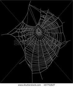 spider web detailed vector illustration - white threads over white