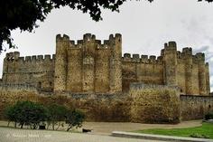 Castillo de Valencia de Don Juan, Castilla y León, España.Fue construido en el siglo XV por los Acuña, Condes de Valencia, en un castro de la Edad de Hierro, y sobre las ruinas una fortaleza anterior, destruida por Almanzor en el 996    by pacomol, via Flickr