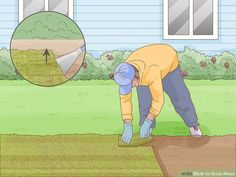 How to Grow Moss: 13 Steps (with Pictures) - wikiHow Life Landscaping Around Trees, Landscaping With Rocks, Moss Garden, Garden Plants, Types Of Moss, Diy Garden Projects, Garden Ideas, Backyard Ideas, Growing Moss