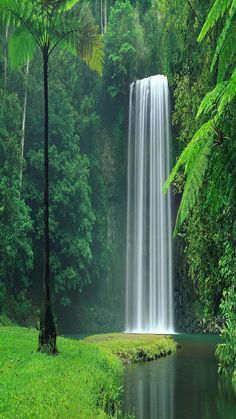 Waterfalls Lakes Plitvice, Croatia (National Park) Is among the 20 most beautiful lakes in the world to 17th place