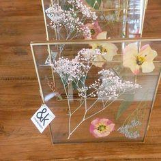 Prachtige lijstjes van @ klevering_amsterdam met gedroogde bloemen bij Homestock @ homestocknl