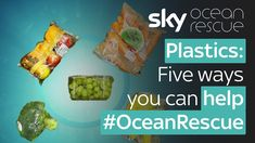 Plastics: Five ways you can help Gas And Electric, Sky News, Ocean, Plastic, Make It Yourself, Canning, Zero Waste, Environment, Challenge