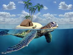 Turtle Island by ivanildo  8th place entry in Animal Proportions 4