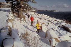 acadia national park winter   Acadia Nationalpark: Ski-Wanderer an der Küste [Foto: U.S. National ...