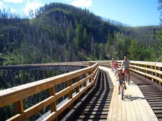 Myra Canyon Trestles - bring your own or rent bicycles and enjoy an amazing and uniquely Okanagan experience.  Learn about how fire destroyed the trestles just 8 years ago and how our community pulled together to rebuild them.  #kelownahistory #okanagan #familyfun Bike Trails, Hiking Trails, Family Days Out, Canada Travel, Plein Air, Vacation Spots, Vacation Ideas, Cool Bikes, Places To See
