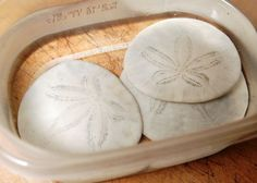 Take the Side Street: How to Preserve Sand Dollars Sand Crafts, Beach Crafts, Rock Crafts, Diy Crafts, Seashell Crafts Kids, Seashell Ornaments, Cleaning Sea Shells, Sand Dollar Art, Seashell Painting