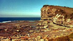 Terrigal NSW: famous rock platform (1981)