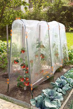 Vegetable garden: the work of spring - garden landscaping Potager Bio, Hydroponic Farming, Greenhouse Gardening, Gardening Tips, Mini Greenhouse, Organic Gardening, Vegetable Garden Design, Garden Trellis, Edible Garden