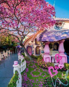 Minnie's House, Toontown, Disneyland Disneyland Trip, Disney Trips, Disneyland Resort, Disney Dream, Disney Love, Disney Magic, Best Disney Hotels, Disney Parque, Shotting Photo