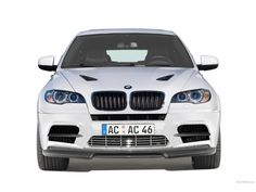 BMW X6 Car Pictures