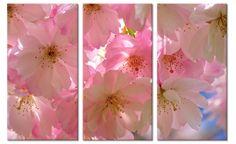 Foto schilderij roze kersenbloesem op canvas (drieluik)