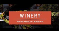 winery in Bordeaux, France