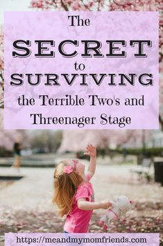 The Secret to Surviving the Terrible Two's and Threenager Stage. The toddler years can be challenging. Here is how to get through it with your sanity (mostly) intact. #parenting #toddlers #behavior #strategy #advice #children #preschoolers #family
