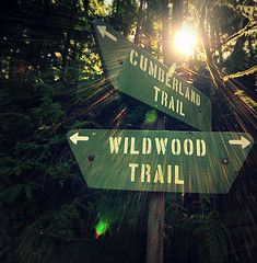 Hike the entire wildwood trail in Forest Park. Moving To Portland, Visit Portland, Portland Oregon, The Places Youll Go, Great Places, Places To Go, Get Outdoors, The Great Outdoors, Forest Path