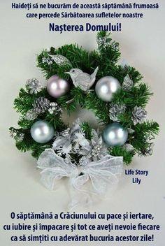 Christmas Wreaths, Merry Christmas, December, Romania, Holiday Decor, Facebook, Xmas, Merry Little Christmas, Wish You Merry Christmas