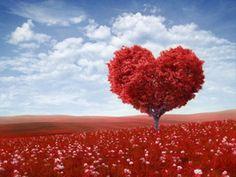 Der Tag der Liebenden steht vor der Tür. EAT SMARTER hat Ideen für passende Valentinstagsgeschenke.